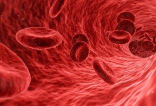 Arterije se mogu pročistiti- saznajte i na koji način!